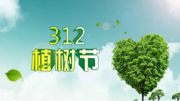 """""""护树造林,美化厂区""""——山东布洛尔开展植树节主题活动"""